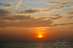 Solnedgångar29